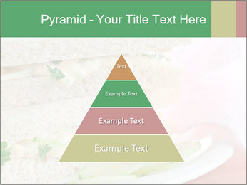 0000071681 PowerPoint Template - Slide 30