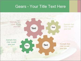 0000071681 PowerPoint Template - Slide 47