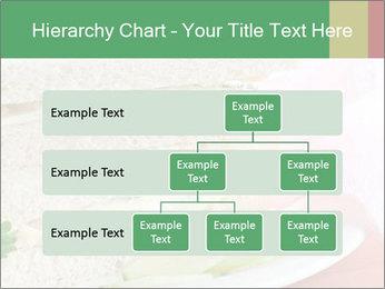 0000071681 PowerPoint Templates - Slide 67