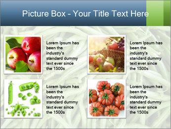 0000071682 PowerPoint Template - Slide 14