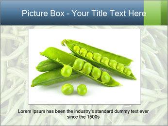 0000071682 PowerPoint Template - Slide 15