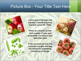 0000071682 PowerPoint Template - Slide 24