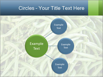 0000071682 PowerPoint Template - Slide 79