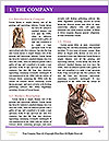 0000071686 Word Templates - Page 3