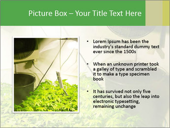 0000071687 PowerPoint Template - Slide 13