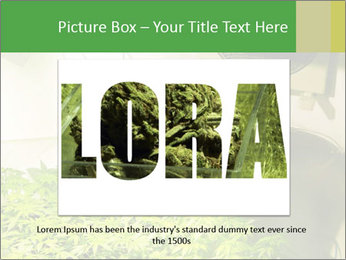 0000071687 PowerPoint Template - Slide 15