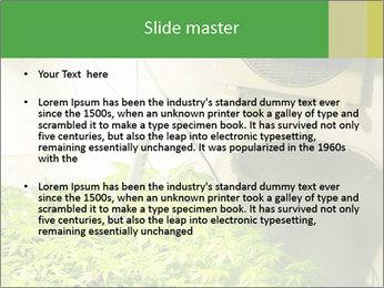 0000071687 PowerPoint Templates - Slide 2