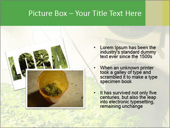 0000071687 PowerPoint Template - Slide 20