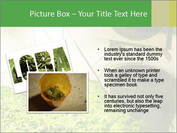 0000071687 PowerPoint Templates - Slide 20