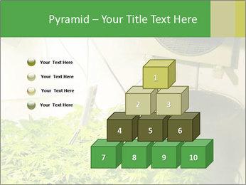 0000071687 PowerPoint Templates - Slide 31