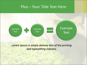 0000071687 PowerPoint Template - Slide 75