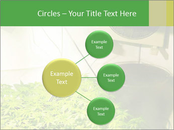 0000071687 PowerPoint Templates - Slide 79