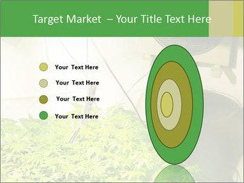 0000071687 PowerPoint Template - Slide 84