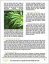 0000071687 Word Template - Page 4