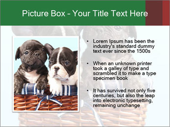 0000071689 PowerPoint Templates - Slide 13