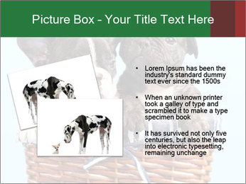 0000071689 PowerPoint Templates - Slide 20