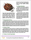 0000071694 Word Templates - Page 4