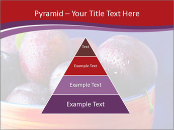 0000071698 PowerPoint Templates - Slide 30