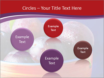 0000071698 PowerPoint Templates - Slide 77