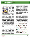 0000071706 Word Template - Page 3