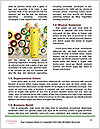 0000071706 Word Template - Page 4