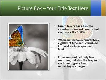 0000071709 PowerPoint Templates - Slide 13