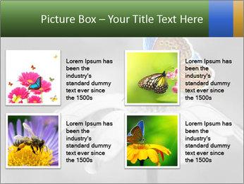 0000071709 PowerPoint Templates - Slide 14