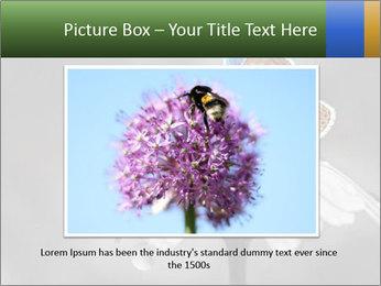 0000071709 PowerPoint Templates - Slide 15