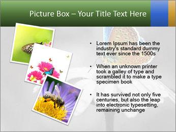 0000071709 PowerPoint Templates - Slide 17