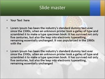 0000071709 PowerPoint Templates - Slide 2