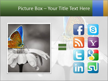 0000071709 PowerPoint Templates - Slide 21