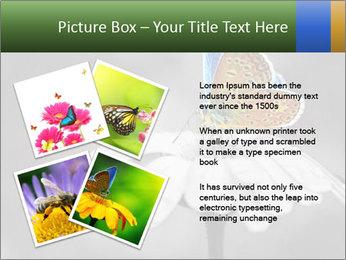 0000071709 PowerPoint Templates - Slide 23