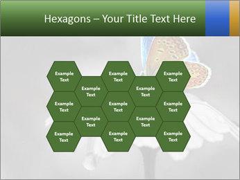 0000071709 PowerPoint Templates - Slide 44