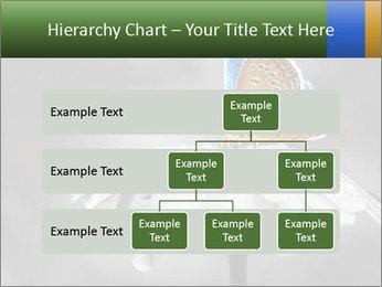 0000071709 PowerPoint Templates - Slide 67