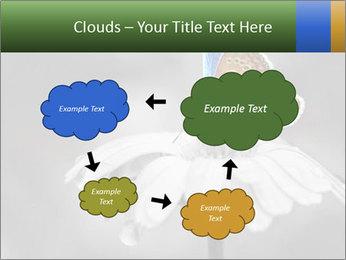 0000071709 PowerPoint Templates - Slide 72