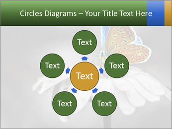 0000071709 PowerPoint Templates - Slide 78