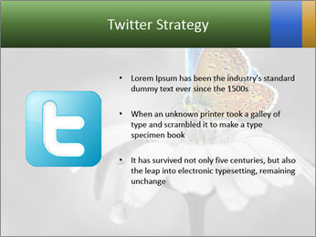 0000071709 PowerPoint Templates - Slide 9
