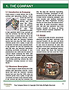 0000071721 Word Template - Page 3