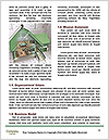 0000071721 Word Template - Page 4