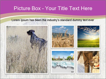 0000071725 PowerPoint Template - Slide 19