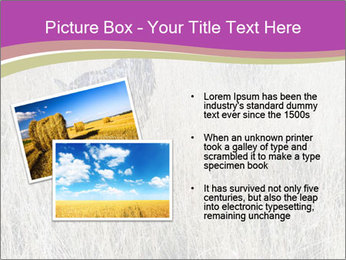 0000071725 PowerPoint Template - Slide 20