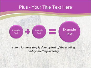 0000071725 PowerPoint Template - Slide 75