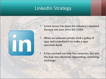0000071729 PowerPoint Templates - Slide 12