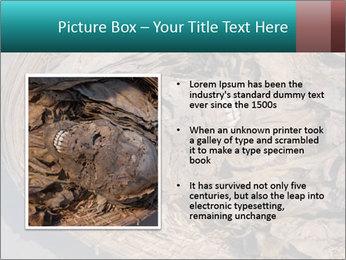 0000071729 PowerPoint Templates - Slide 13