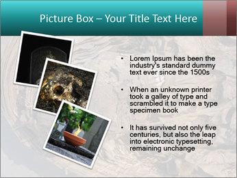 0000071729 PowerPoint Templates - Slide 17
