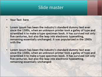 0000071729 PowerPoint Templates - Slide 2