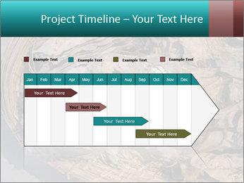0000071729 PowerPoint Templates - Slide 25