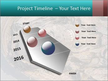 0000071729 PowerPoint Templates - Slide 26