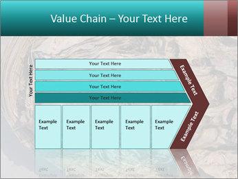 0000071729 PowerPoint Templates - Slide 27