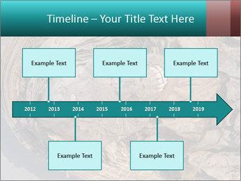 0000071729 PowerPoint Templates - Slide 28